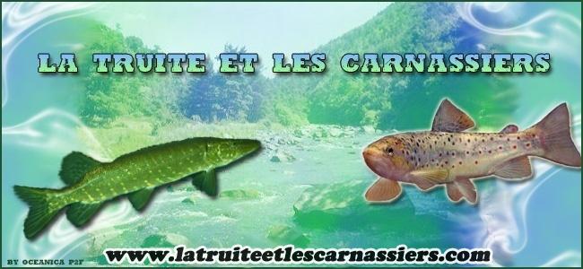 La Truite et les Carnassiers