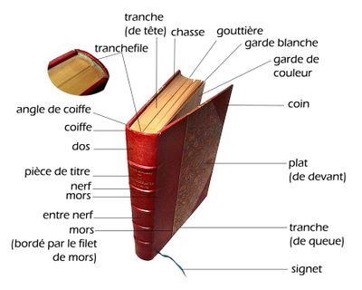 Le vocabulaire du livre 400px-10