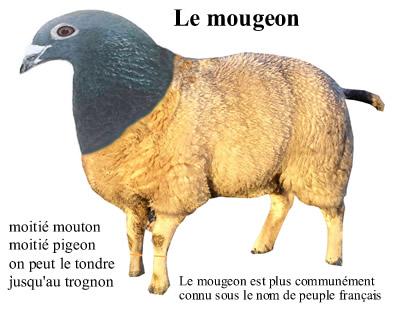 Sidaventure-journalisme-en-résistance Le_mou10