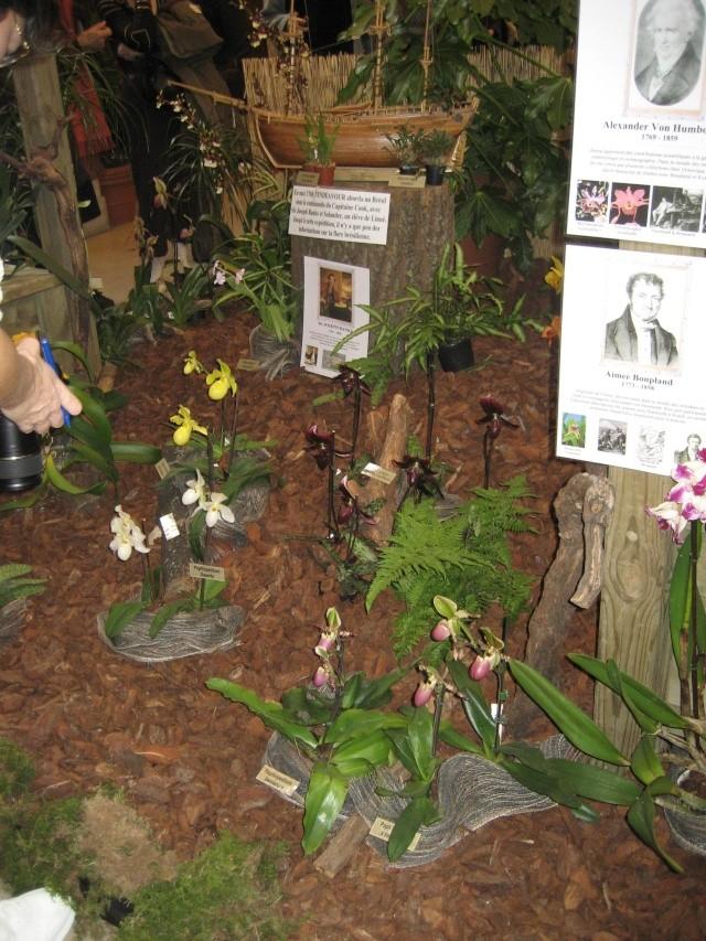 Exposition orchidées à l'école de médecine 2008 Expo_o14
