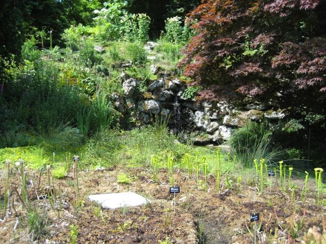 Jardin botanique d'orleans 2008 Parc_f17