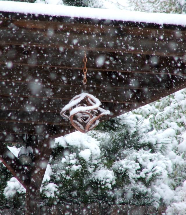 It's Snowing! Dscf5310