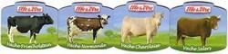 ELLE & VIRE : Races de Vaches