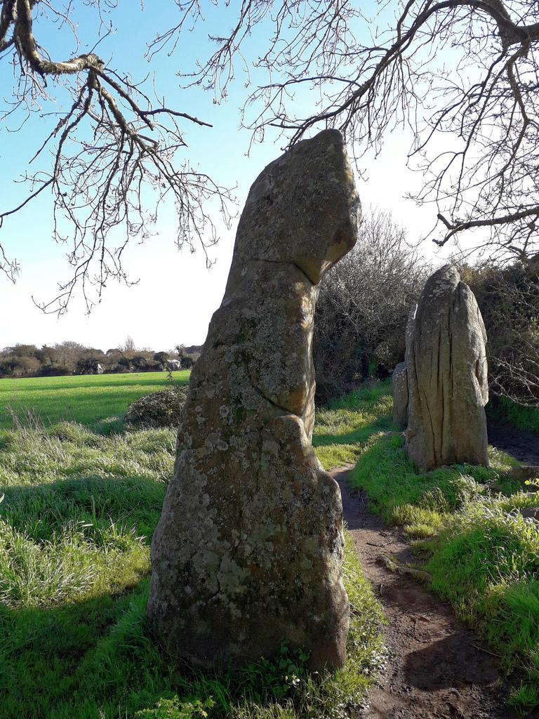 Sur le chemin des pénitants de pierre ! 20200310