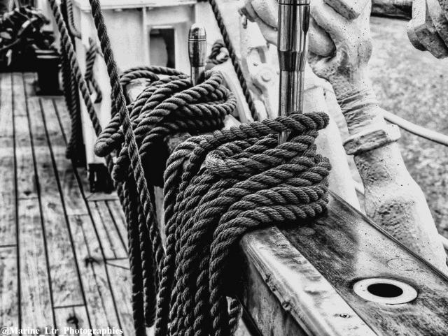 Première Photo en Noir et Blanc Armada10
