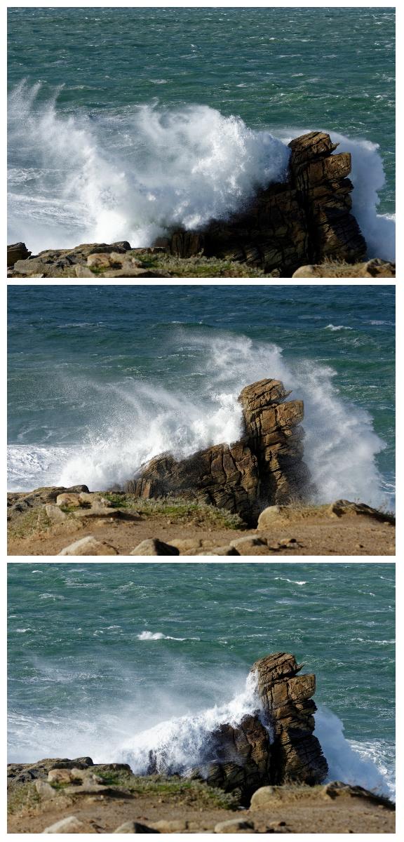 """Lavage maritime d'un """"chien de mer"""" Collag19"""