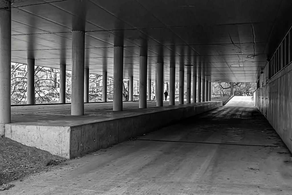promenade ( votre avis) Dsc00310