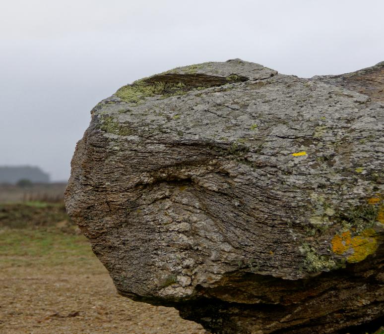 visage de pierre !!! Dsc_0162