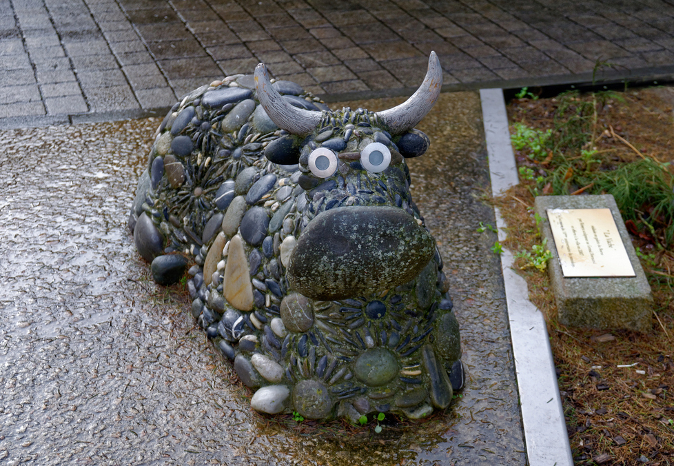 La vache du Grand Bornand !!! Dsc_0180