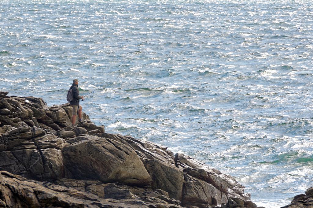 le pêcheur solitaire  ! Dsc_0306