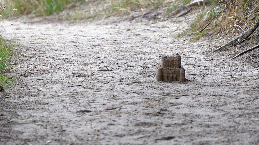 """le chemin du château """"de sable"""" ! Dsc_0343"""