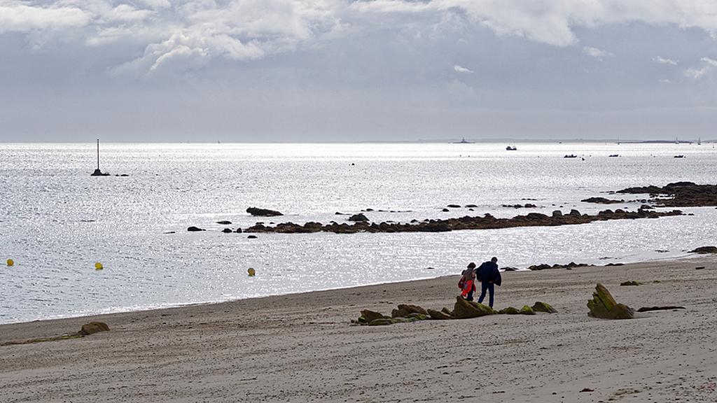 Promenade sur la plage ! Dsc_0365