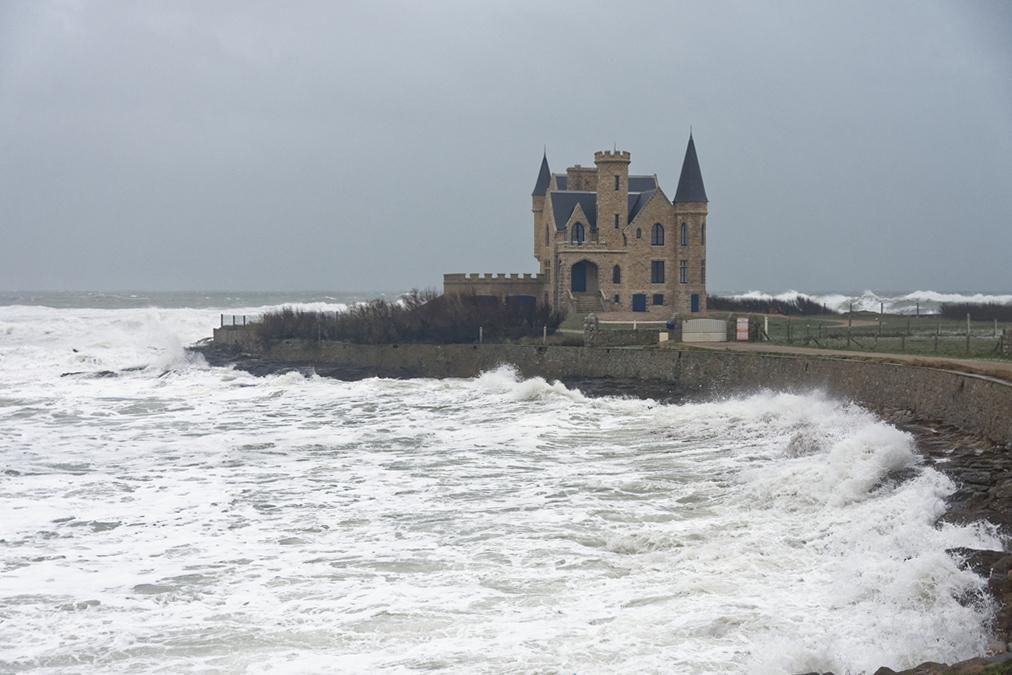 tempête hivernale Ciara la suite ! Dsc_0510