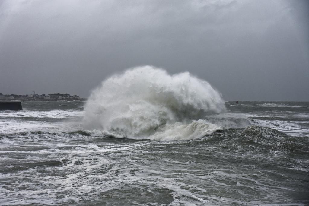 tempête hivernale Ciara la suite ! Dsc_0512