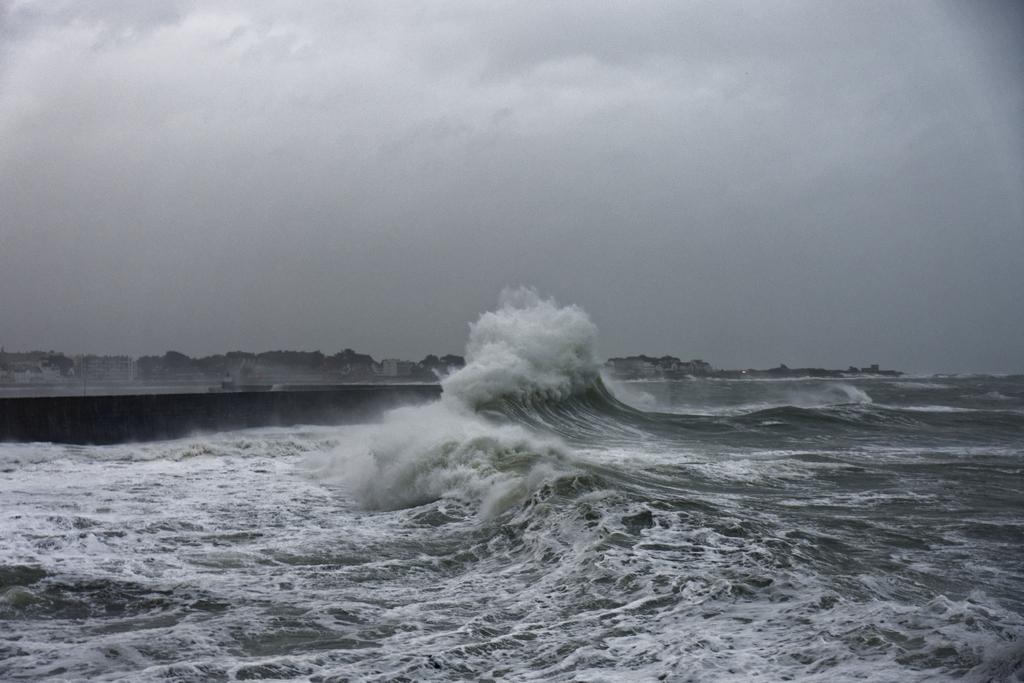 tempête hivernale Ciara la suite ! Dsc_0513