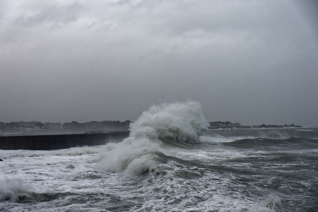 tempête hivernale Ciara la suite ! Dsc_0514