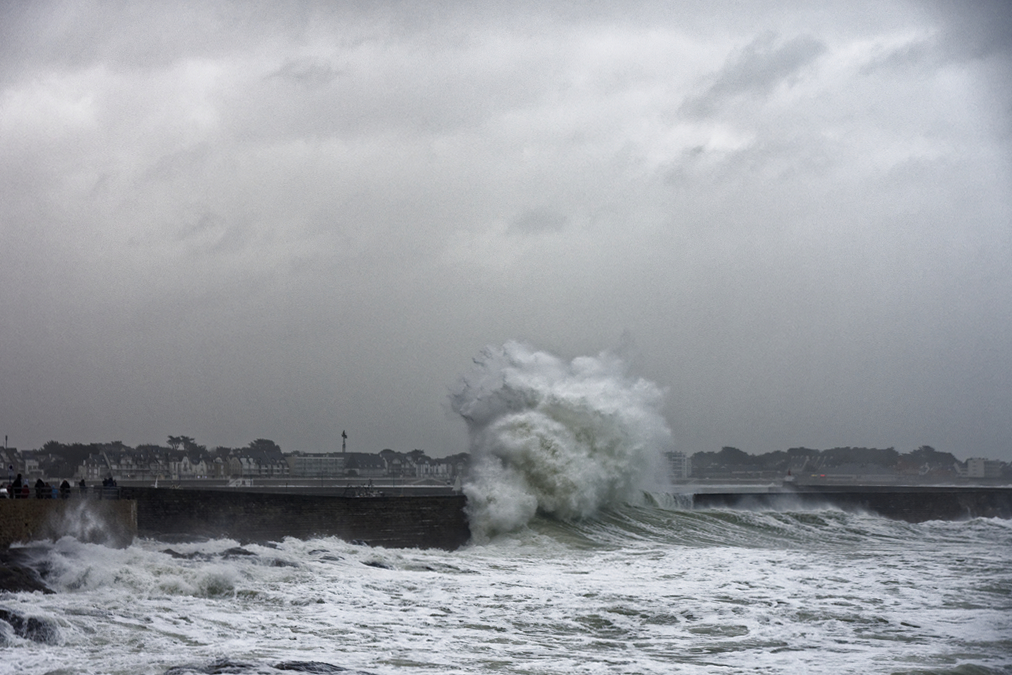 tempête hivernale Ciara la suite ! Dsc_0516