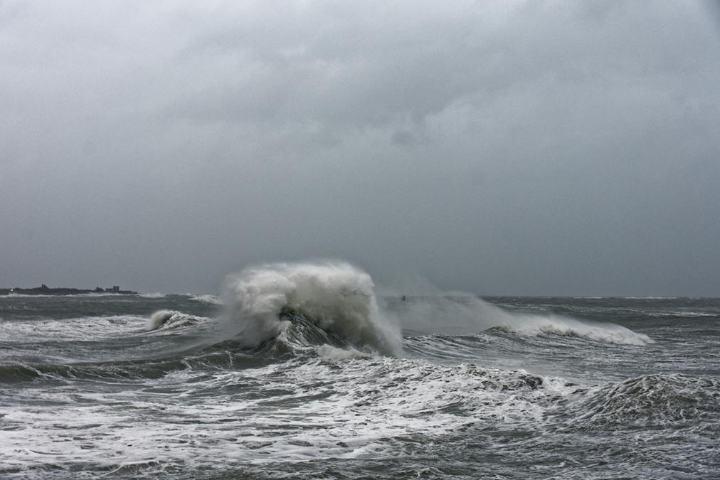 tempête hivernale Ciara la suite ! Dsc_0518