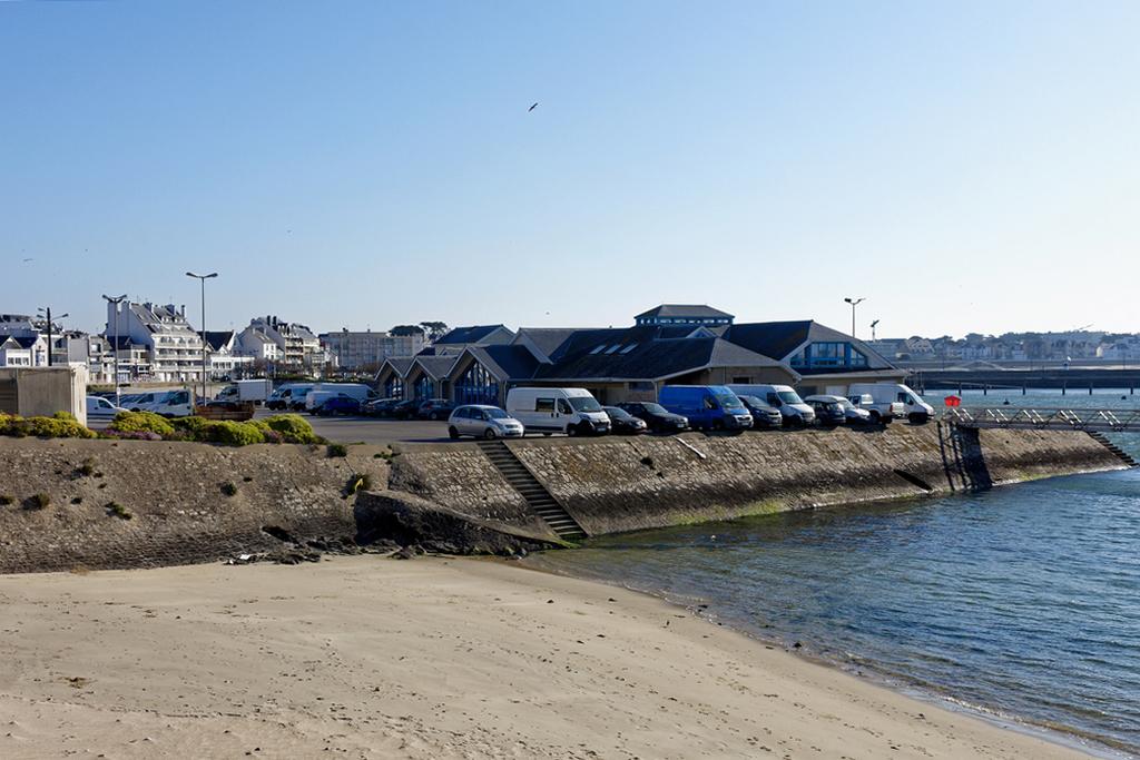 Confinement Quiberon Port Maria criée et quai des bateaux de pêches! Dsc_0732
