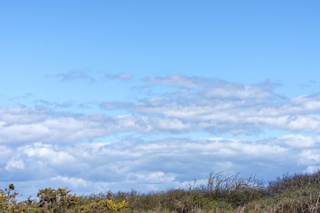 """Plus de""""tour""""de garde pour observer les avions juste le bleu du ciel  Dsc_0741"""