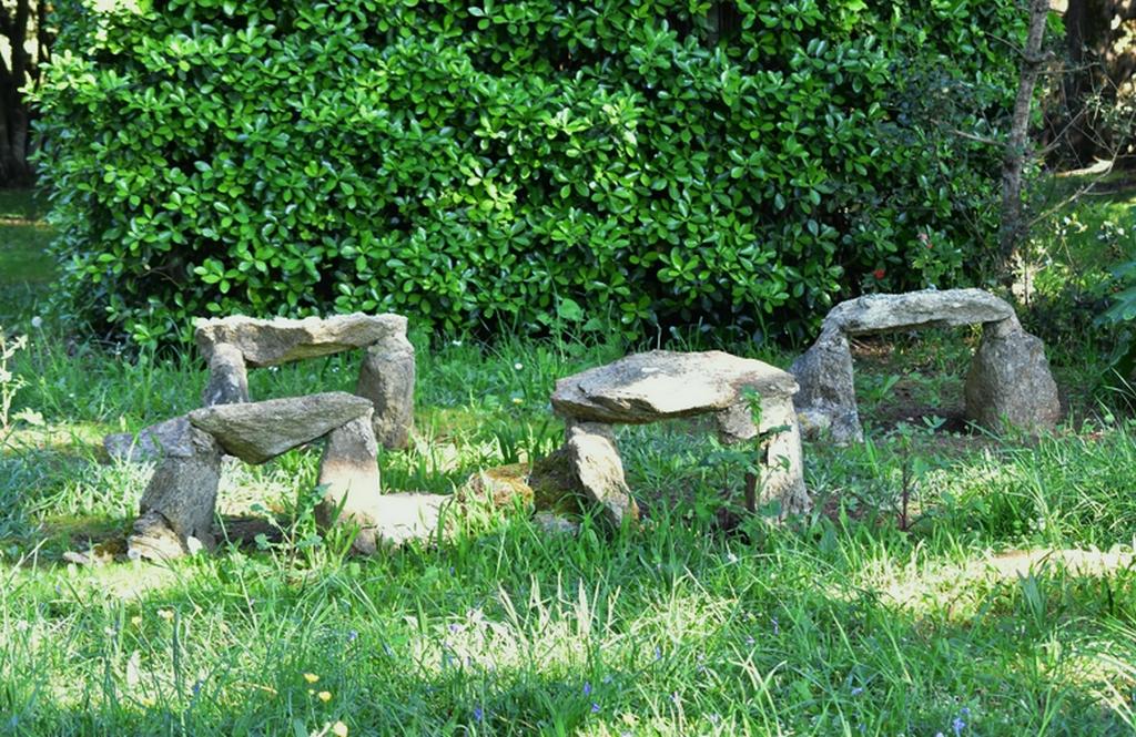 Mini Stonehenge ! Dsc_0841