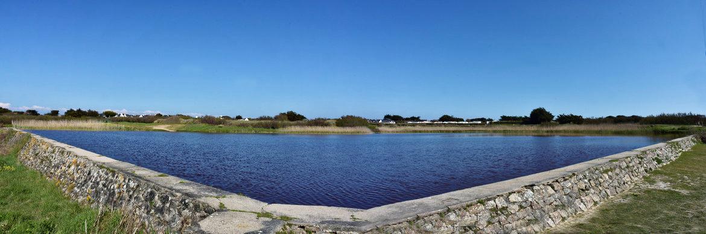 L'étang de Kerné Quiberon  Dsc_0852