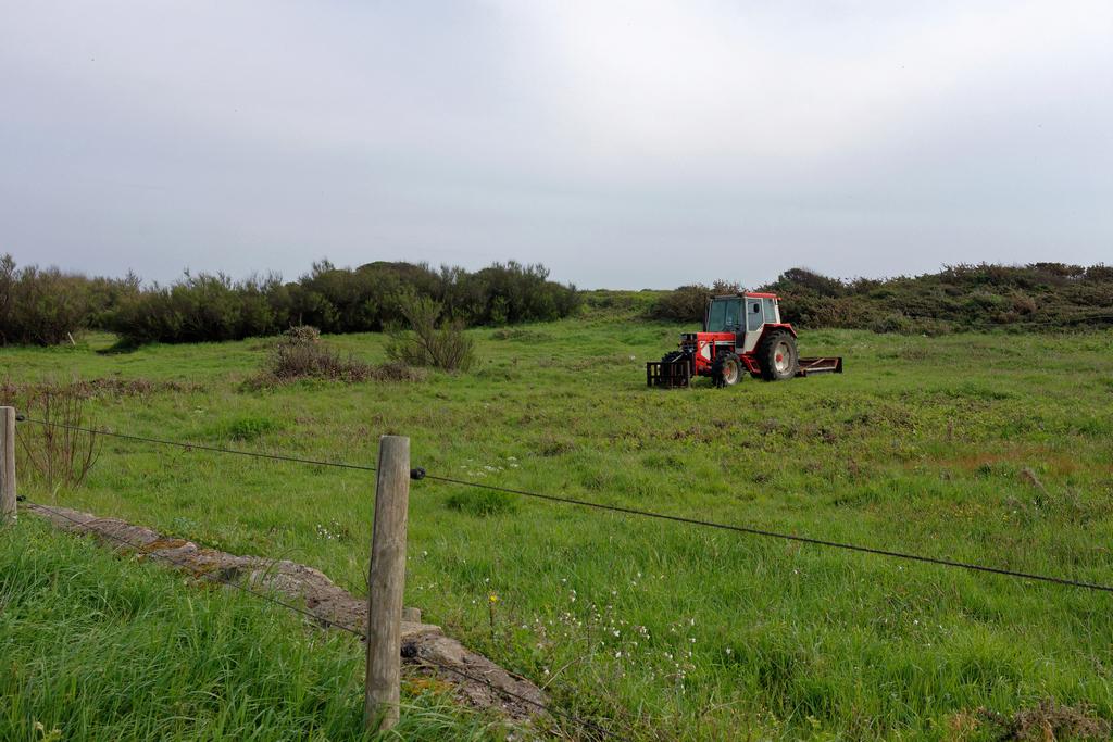 On confine même les tracteurs ! Dsc_0947