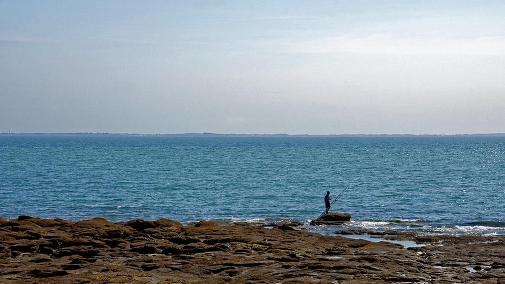 le pêcheur solitaire bis ! Dsc_1417