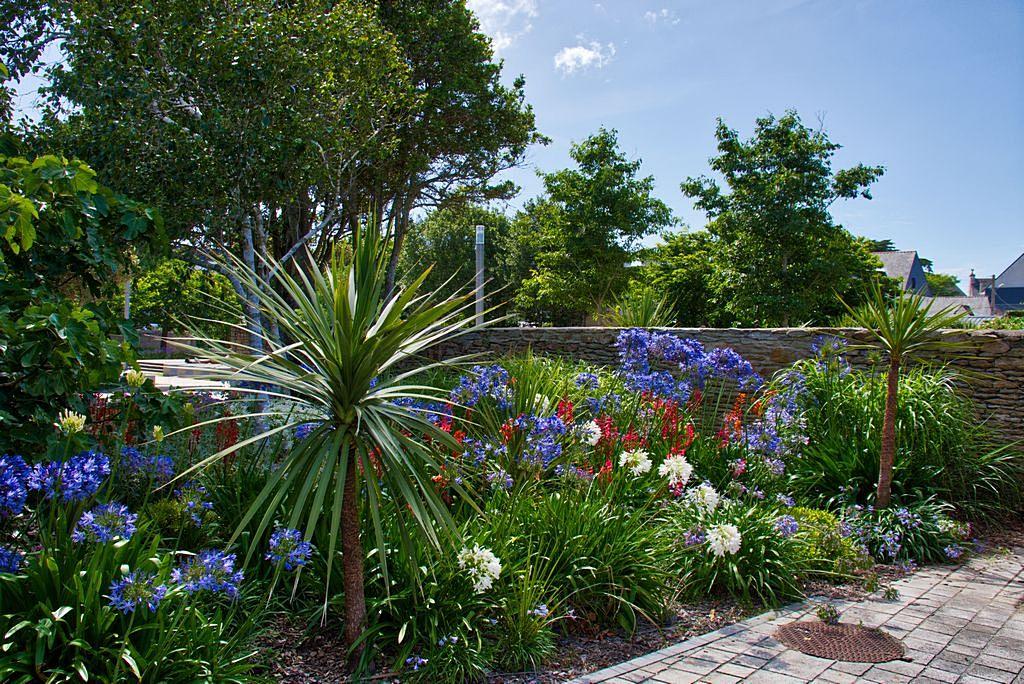 Jardin en fleur ! Dsc_1427