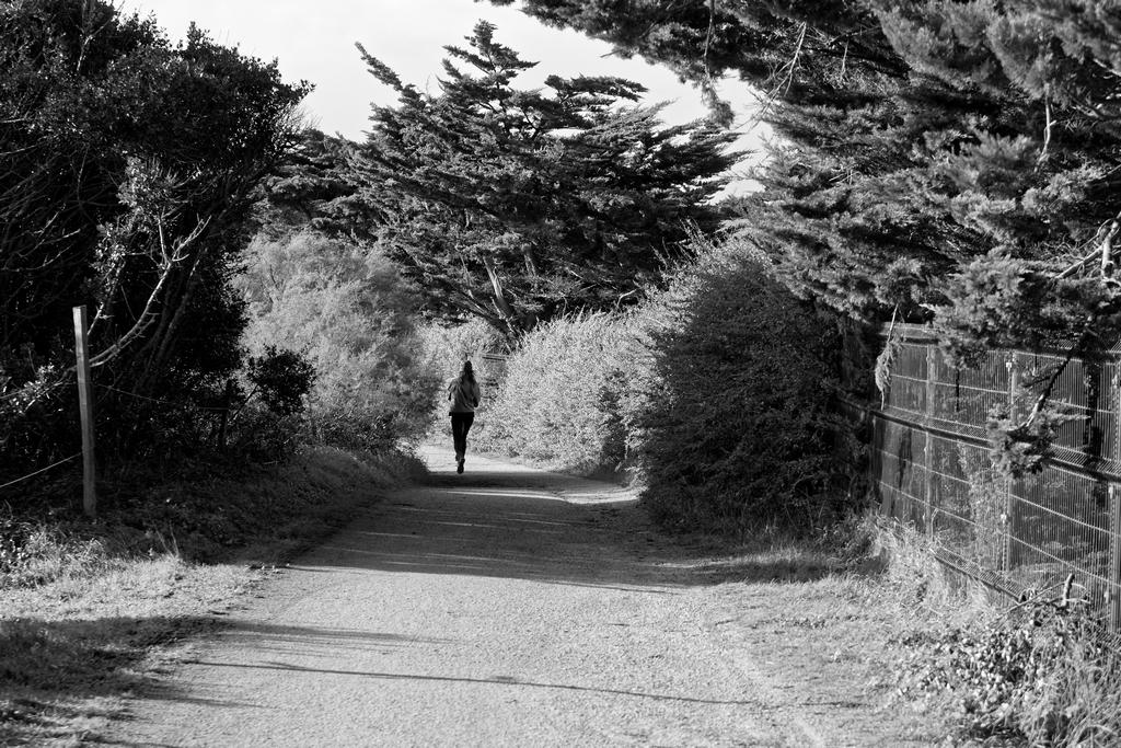 Je marche seule ! Dsc_1750