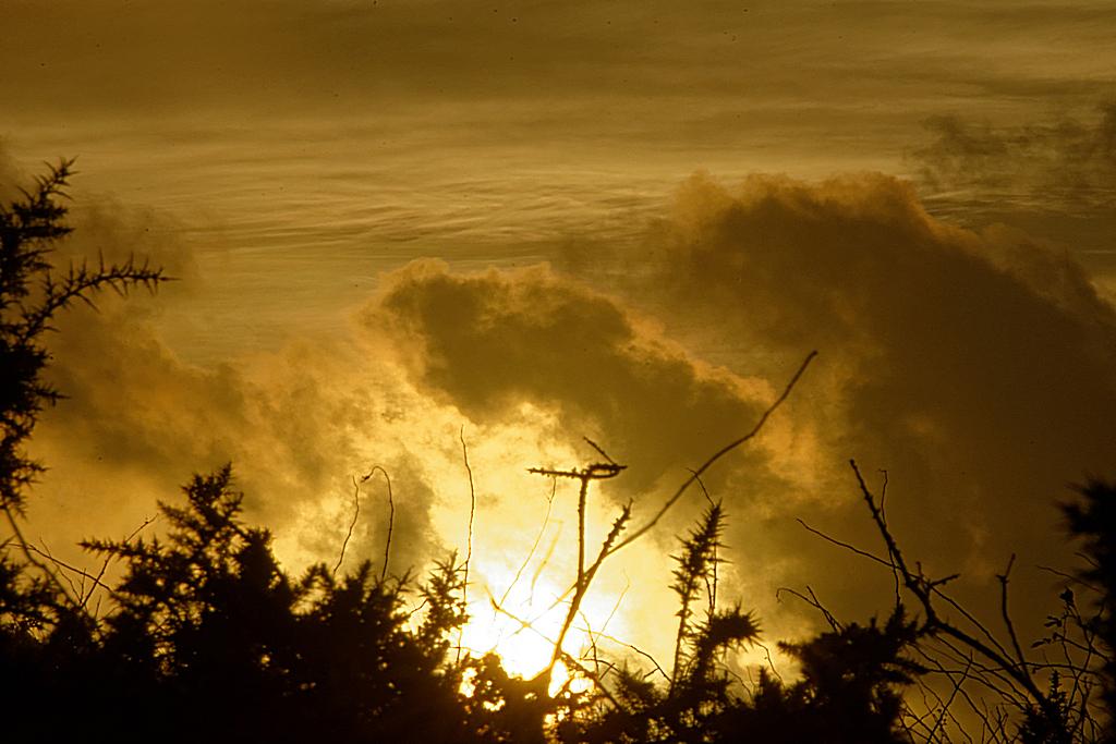 ciel de feu ! Dsc_1844