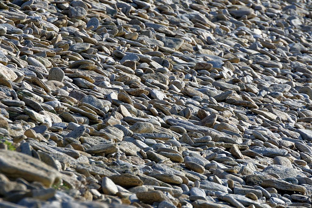 Désert de pierres ! ! Dsc_1942