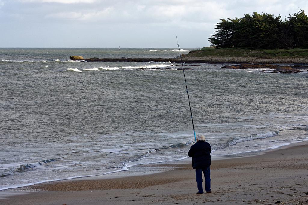 Le pêcheur solitaire ! Dsc_1955