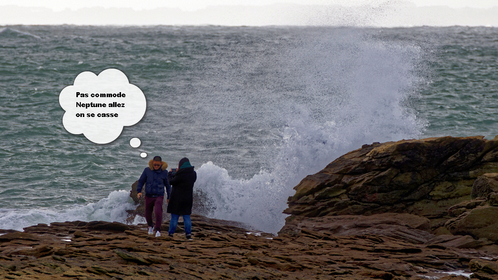 Le touriste qui voulut se prende pour le roi de la mer! Dsc_2010