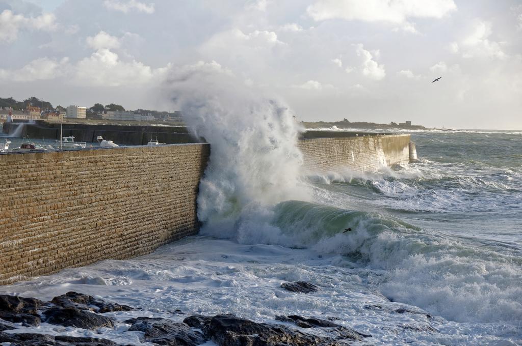 Encore des vagues puissantes ! Dsc_2035