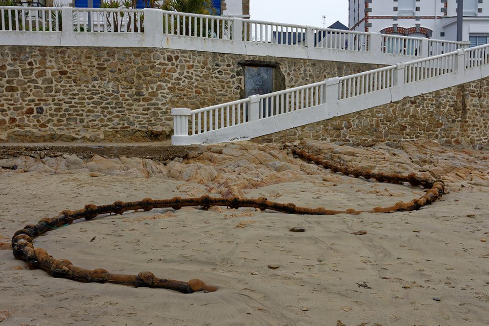 """Le """"serpent de mer"""" !  Dsc_2338"""