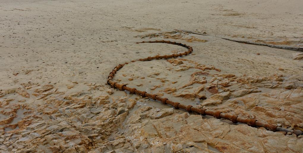 """Le """"serpent de mer"""" !  Dsc_2349"""