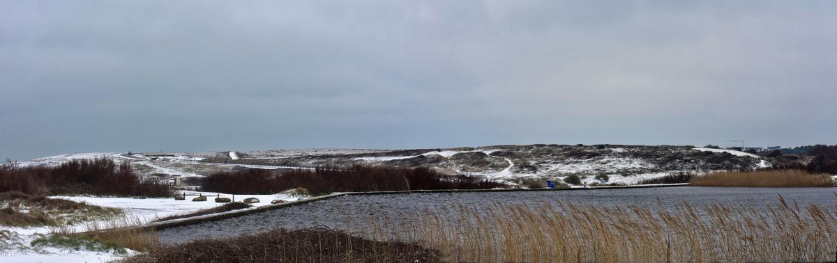 Côte Sauvage sous la neige ! Dsc_2416