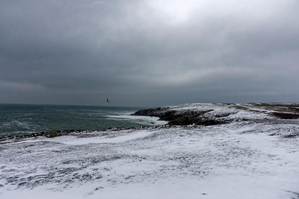 Côte Sauvage sous la neige ! Dsc_2418