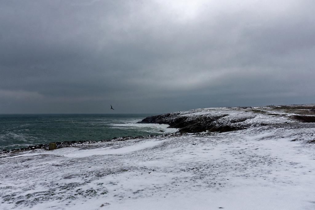 Côte Sauvage sous la neige ! Dsc_2427