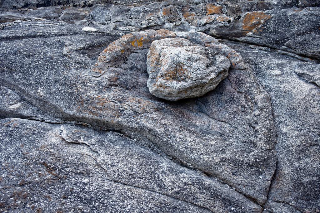 Bestiaire de pierre ! Dsc_3614