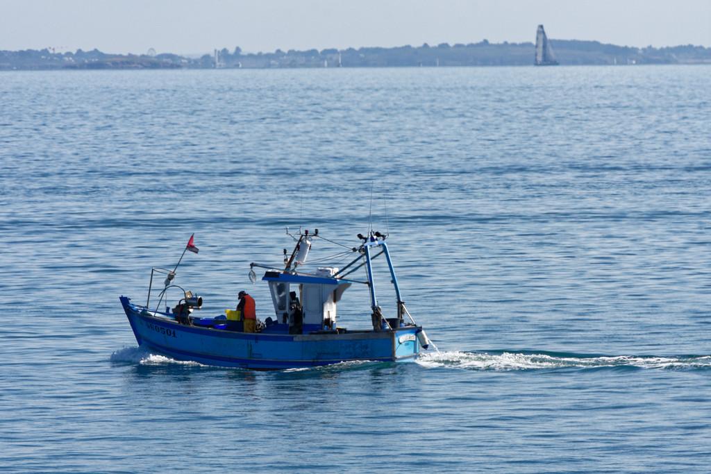 Retour de pêche ! Dsc_3910