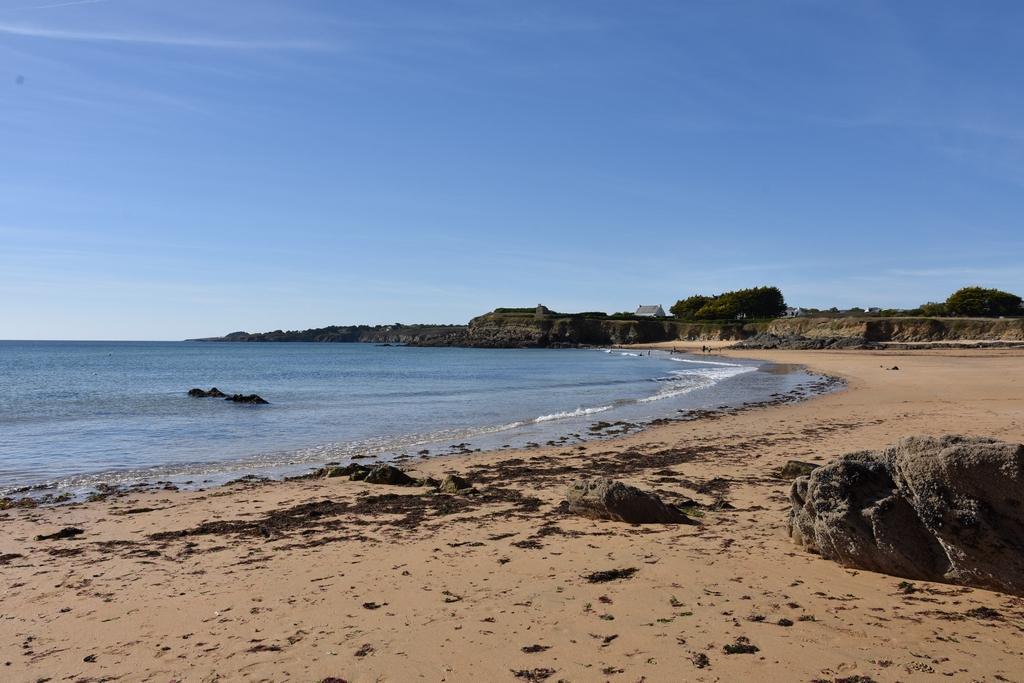 Côte Sauvage coté Finistère Sud ! Dsc_4325