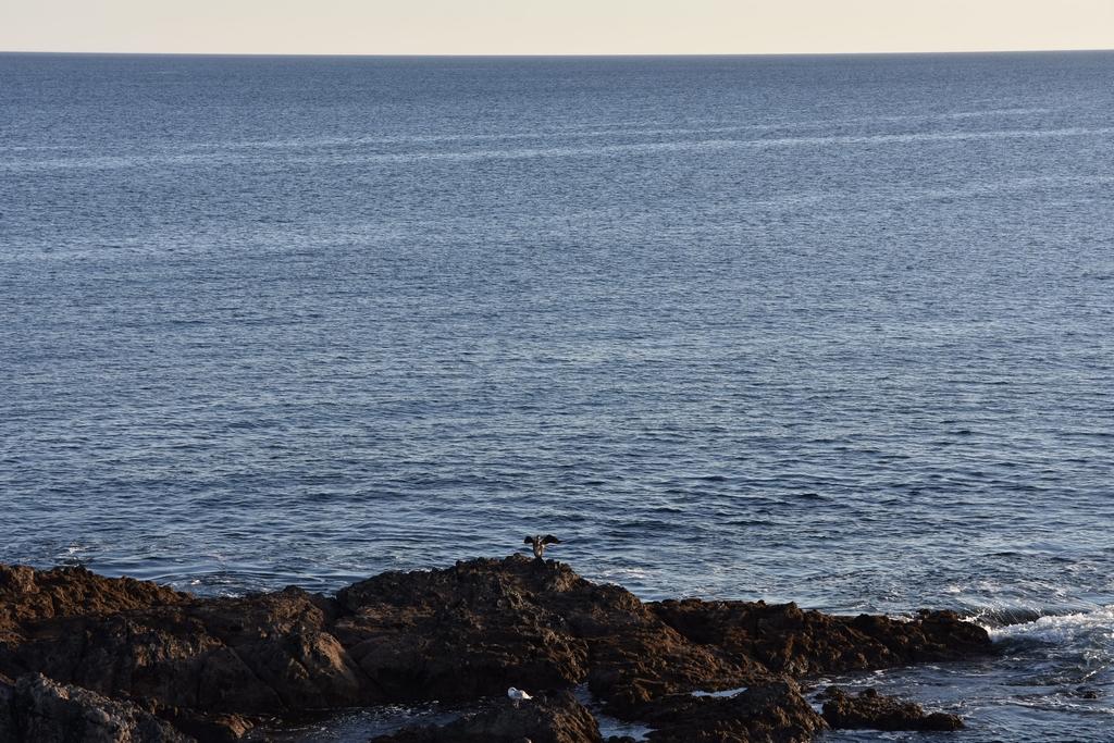 Côte Sauvage coté Finistère Sud ! Dsc_4327