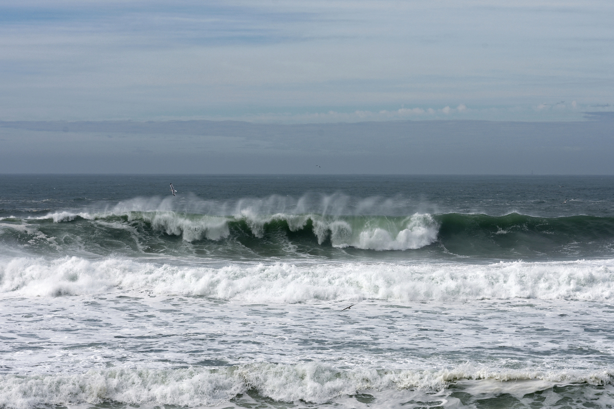 Mer démontée sur la Côte Sauvage Dsc_4524