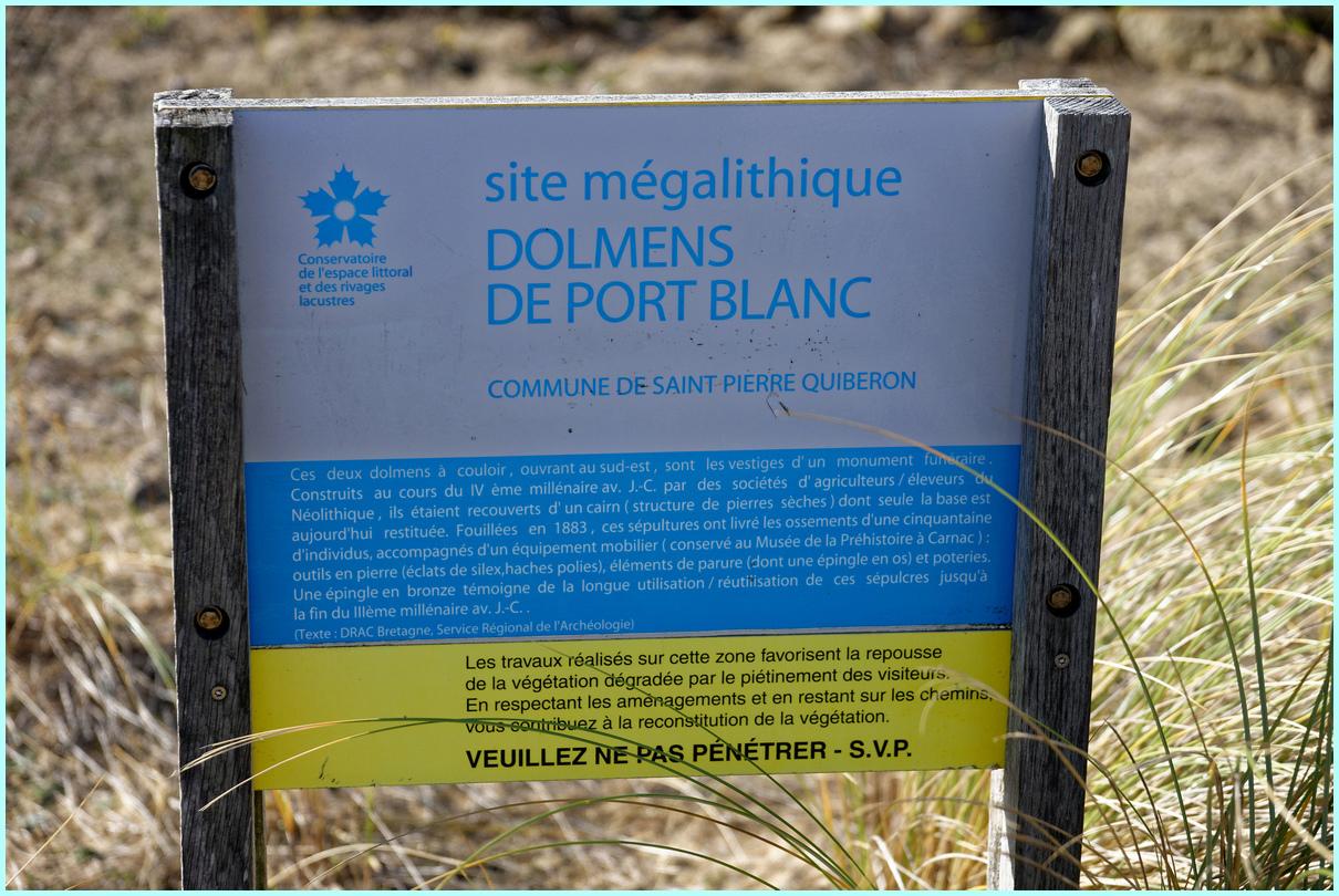 Dolmen Port Blanc Saint Pierre Quiberon ! Dsc_4824