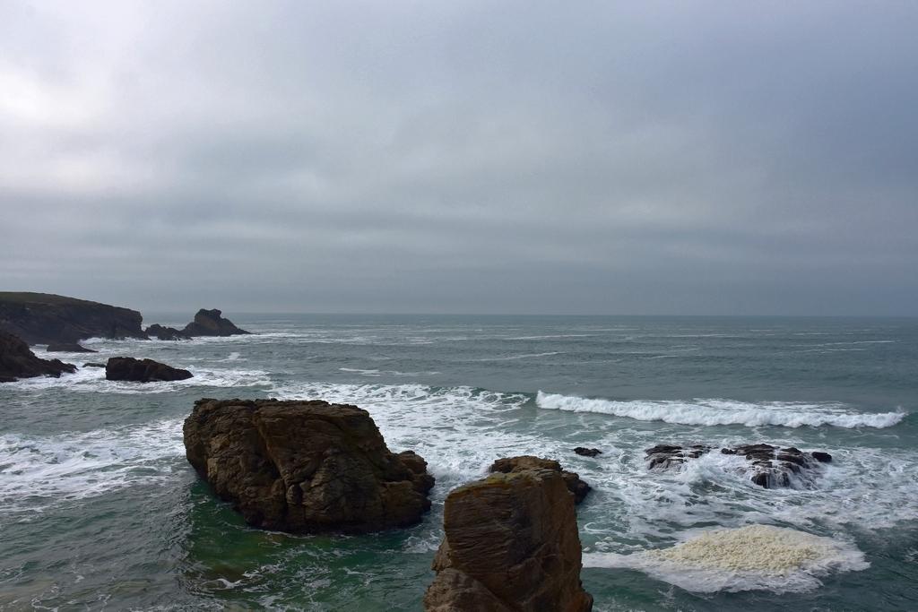 Au loin la brume de mer ! Dsc_4841