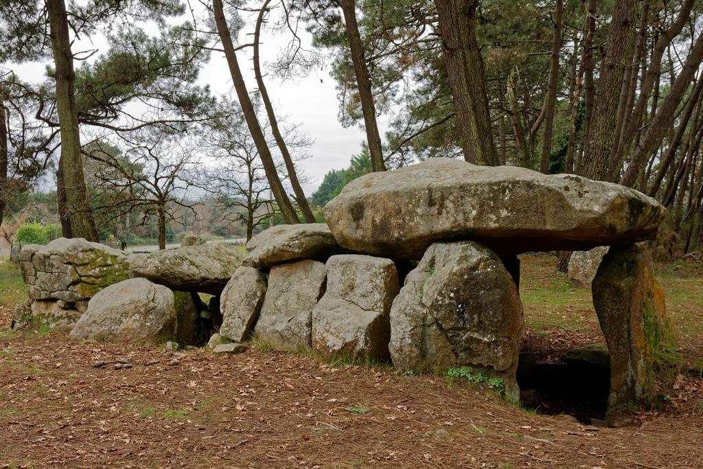 Dolmens de MANE-KERIONED commune de CARNAC Dsc_5114