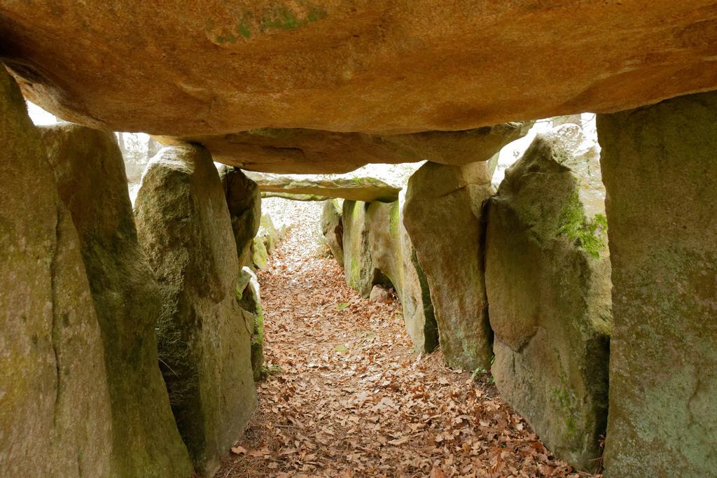 Dolmens de MANE-KERIONED commune de CARNAC Dsc_5115
