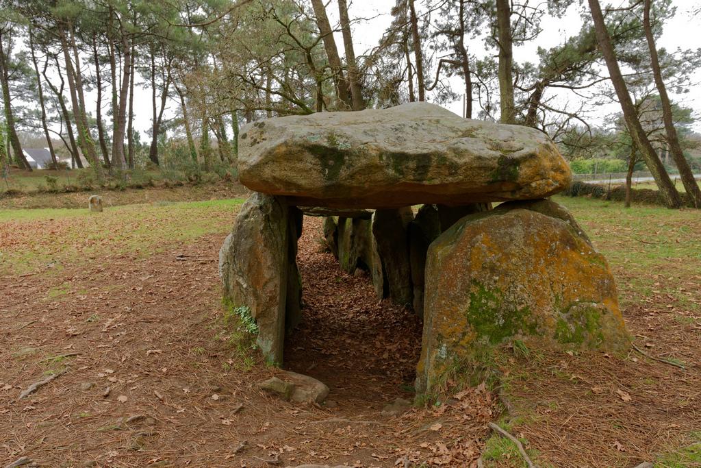 Dolmens de MANE-KERIONED commune de CARNAC Dsc_5116